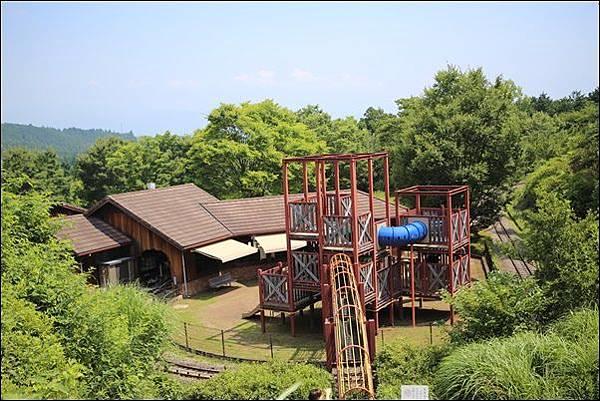 小田原こどもの森公園 (39).jpg