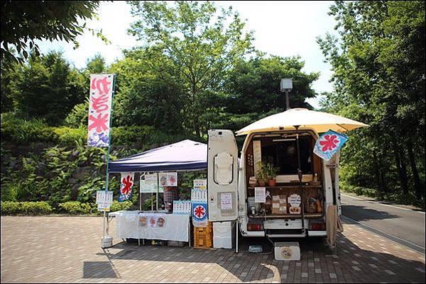 小田原こどもの森公園 (40).jpg
