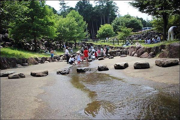 小田原こどもの森公園 (68).jpg