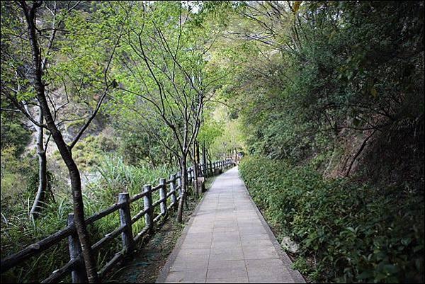 谷關溫泉區 (19).jpg