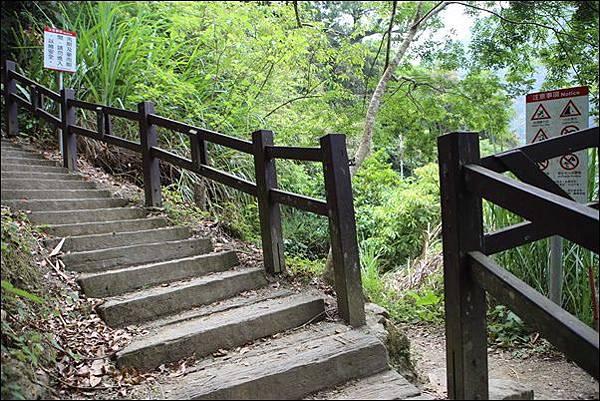 竹坑渓步道 (12).jpg