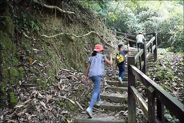 竹坑渓步道 (14).jpg
