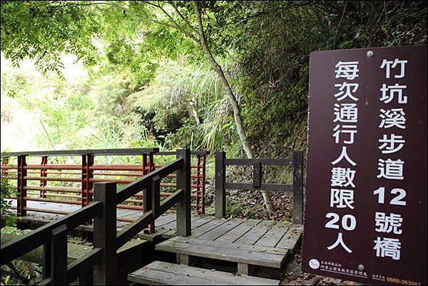 竹坑渓步道 (11).jpg