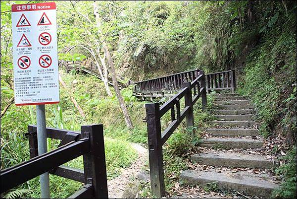 竹坑渓步道 (16).jpg