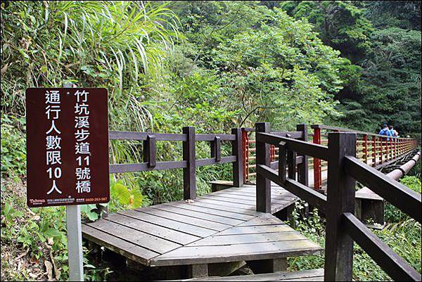 竹坑渓步道 (18).jpg