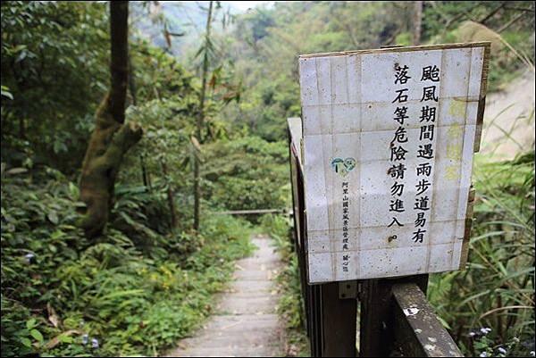 竹坑渓步道 (37).jpg