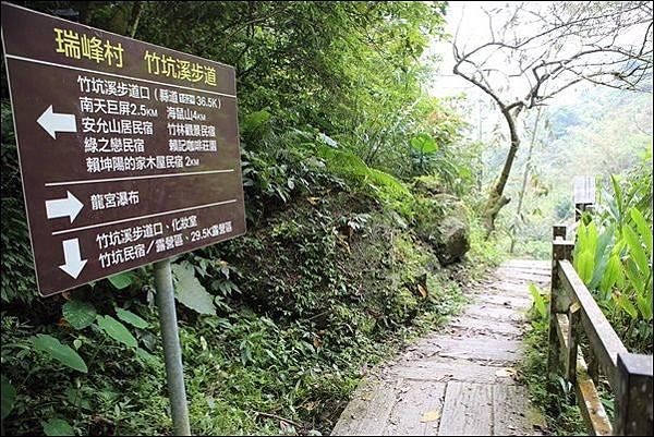竹坑渓步道 (38).jpg