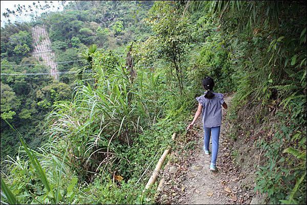 竹坑渓步道 (40).jpg