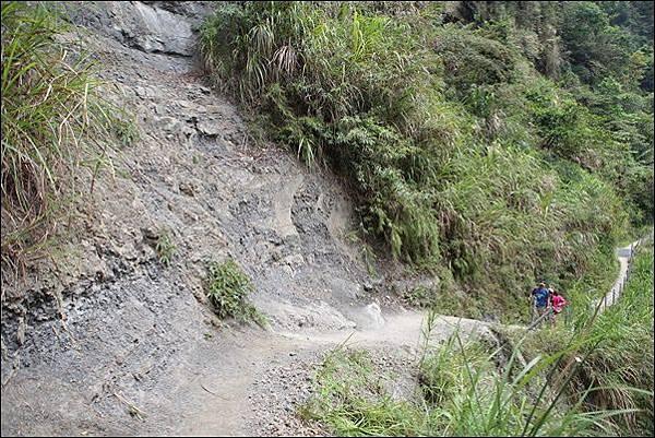 竹坑渓步道 (39).jpg