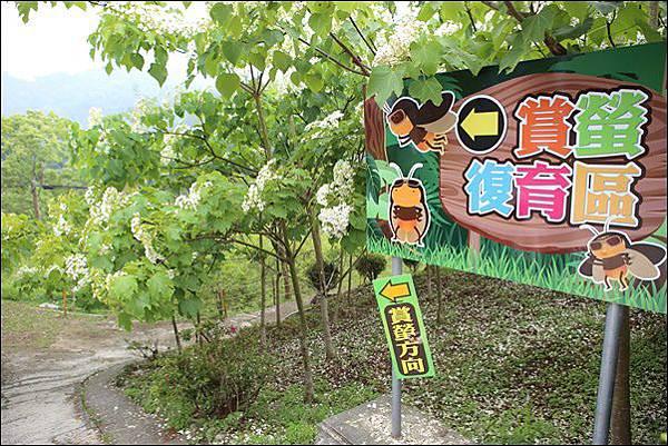 東勢林場 (18).jpg