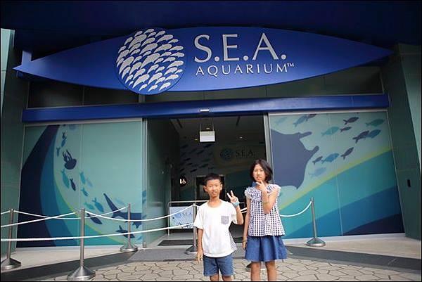 SEA海洋館 (3).jpg