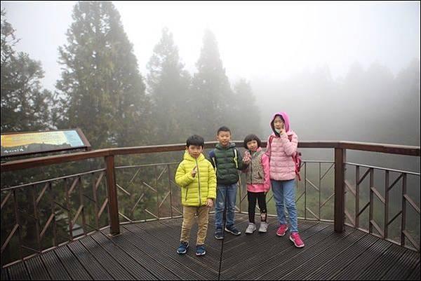 阿里山森林遊樂區 (13)