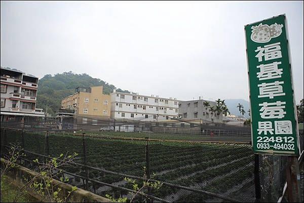 福基草莓園 (1).jpg