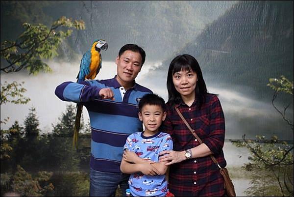 鳳凰谷鳥園 (6).jpg