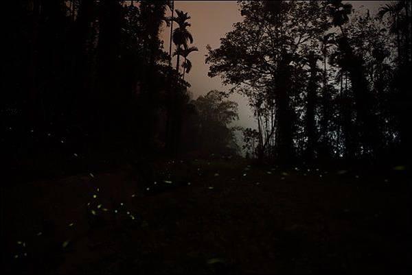 亨宿露營區 (64).jpg