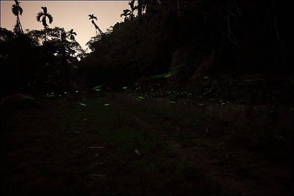 亨宿露營區 (91).jpg