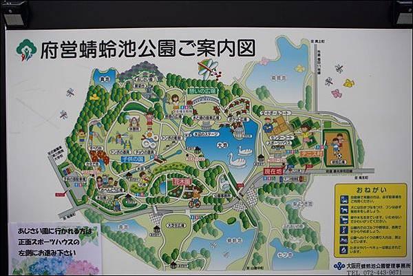 蜻蛉池公園 (8).jpg