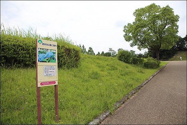 蜻蛉池公園 (9).jpg