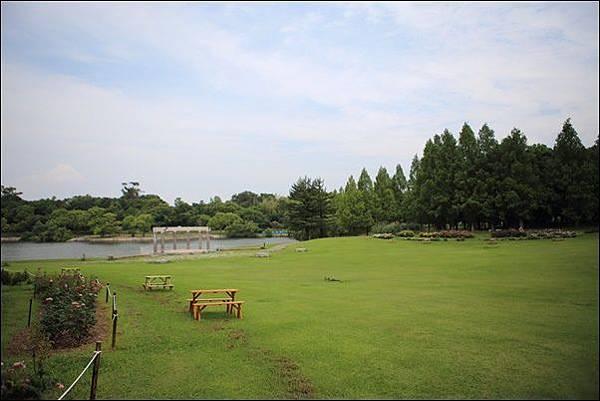 蜻蛉池公園 (11).jpg