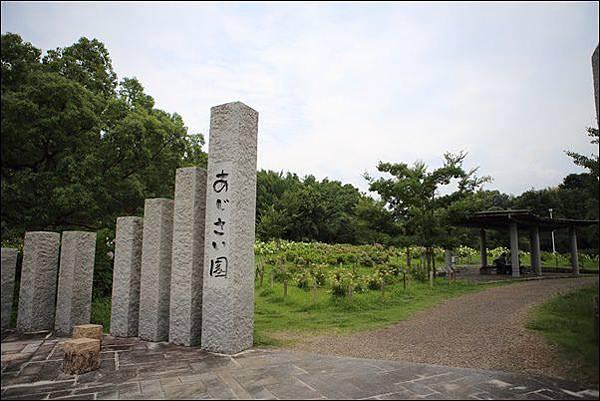 蜻蛉池公園 (14).jpg
