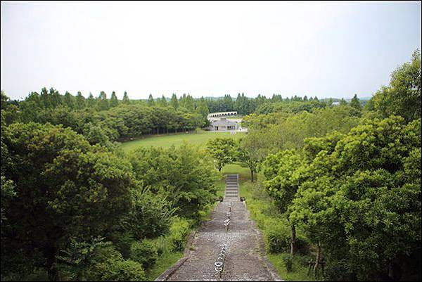 蜻蛉池公園 (19).jpg