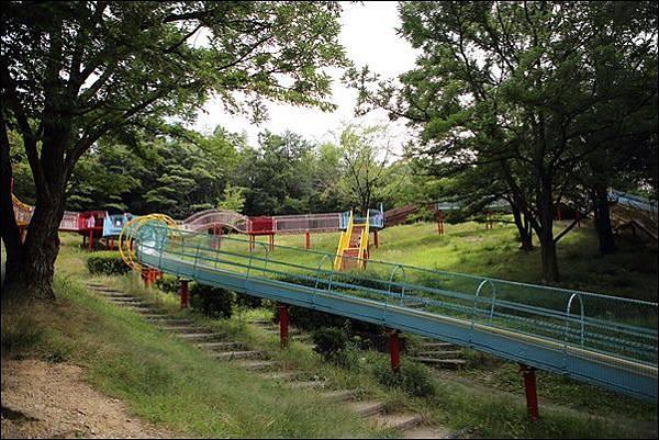 蜻蛉池公園(51)