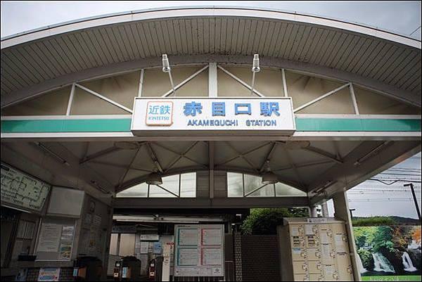 忍者之森 (2).jpg