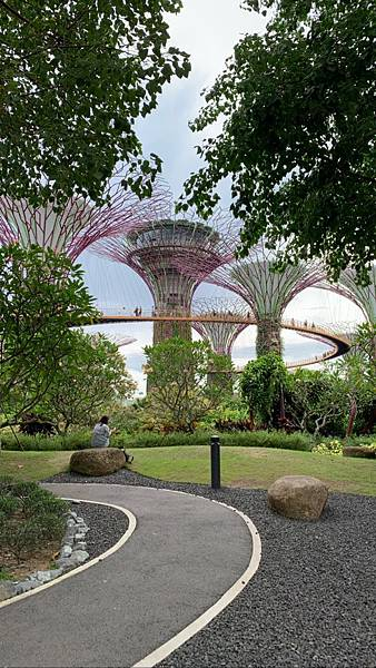 新加坡🇸🇬_190621_0027.jpg