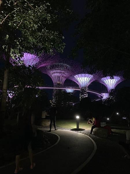 新加坡🇸🇬_190621_0032_0.jpg