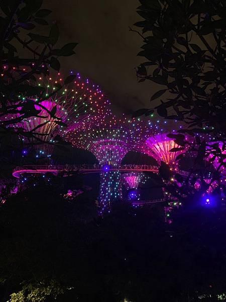 新加坡🇸🇬_190621_0033.jpg