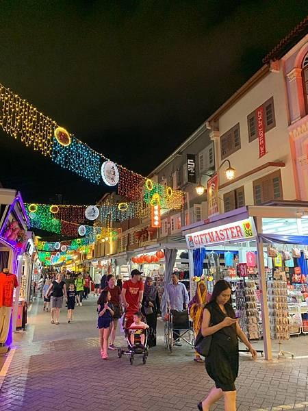 新加坡🇸🇬_190621_0083.jpg