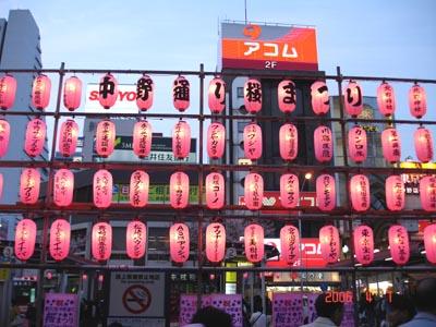 中野的春櫻燈籠