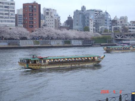 下雨的隅田公園bb