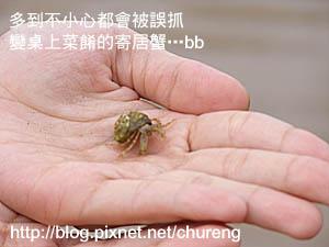 2007馬祖行_四日目 北竿-7