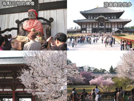東大寺正殿外的景色