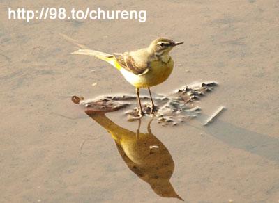 武陵一日目-01