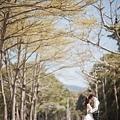 自助婚紗-飛牛牧場+愛麗絲的天空-_06.JPG