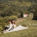自助婚紗-飛牛牧場+愛麗絲的天空-_19.jpg