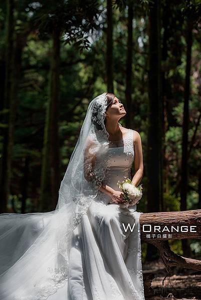 橘子白自助婚紗陽明山黑森林003.jpg
