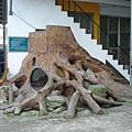 大樹溜滑梯