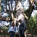 巨木群-大老爺合照