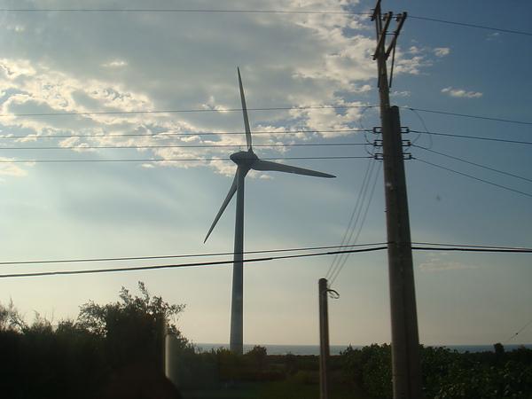 海線沿途的大風車