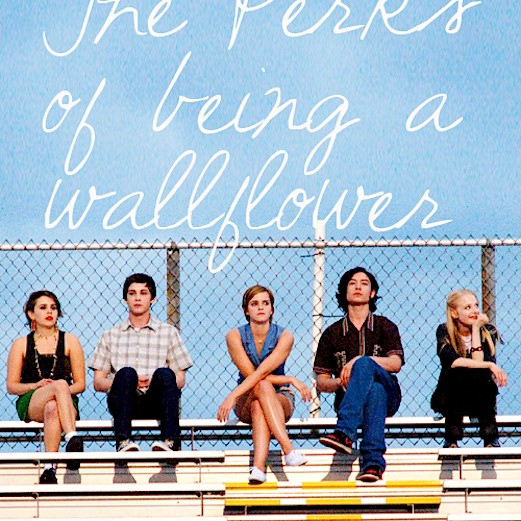 the-Perks-of-being-a-wallflower-movies-31863316-500-650-7833