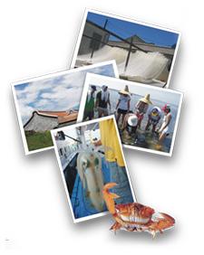 2009年澎湖菊島海鮮節