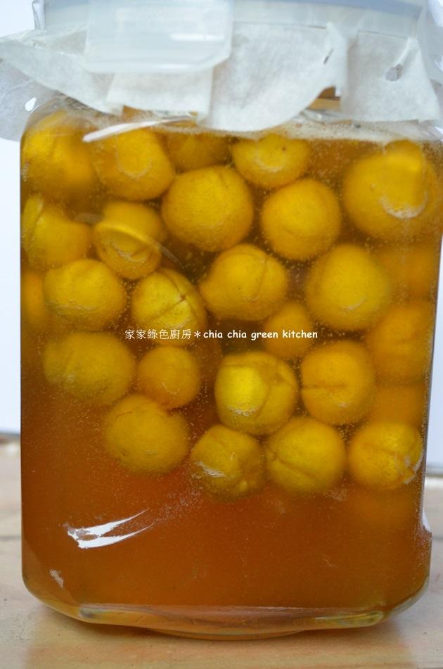 【真的蜂蜜長這樣】真假蜂蜜辨識法‧保存與食用 (13)