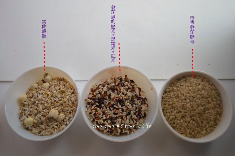 糙米發芽 (12).jpg