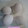 材料_4.雞蛋