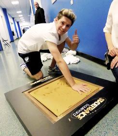Niall Horan27