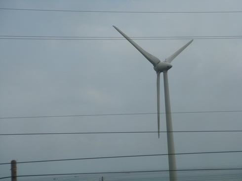 每天在這裡看著風車 也是一種幸福吧