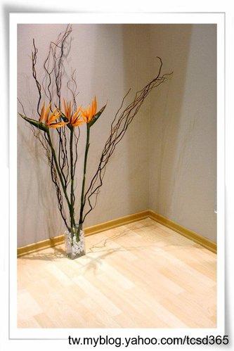 中部室內地板設計 裝潢工程 台中地板工程 老屋翻新 地板施工 居家地板 (19).jpg